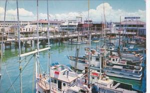 California San Francisco Fisherman's Wharf 1959