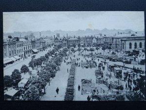 Wiltshire SALISBURY Market Place LIVESTOCK MARKET c1905 Postcard by Valentine