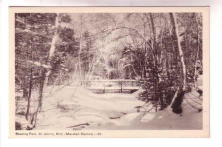 B&W Bowring Park with Snow, St John's Newfoundland, Marshall Studios