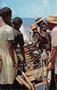 The Caribbean, Native Fish Market Antigua, West Indies Unused