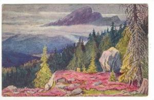 Showing The Tatra Mountains, Poland, 1900-1910s