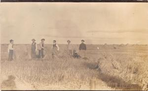 Farm Real Photo Postcard~Men in Suits by Alfalfa Stacks~Hay Mounds~1910 RPPC