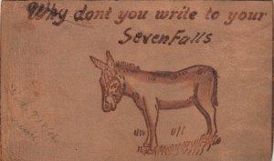 SEVEN FALLS , Colorado , 1906 ; Donkey ; Leather