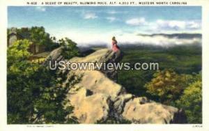 Blowing Rock, North Carolina, NC, Post Card Blowing Rock NC Unused