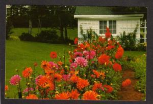 NJ Greetings From Dutch Gardens Adelphia New Jersey Ad Postcard Flowers