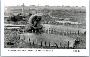 1966 Nome, Alaska RPPC Photo Postcard Pegging Out Seal Skins Eskimo / Indian