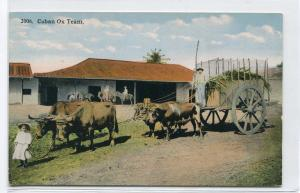Ox Team Farming Cuba 1910s postcard