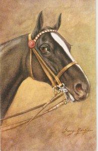 George Ranking. Head of horse Vintage Salmon art  postcard