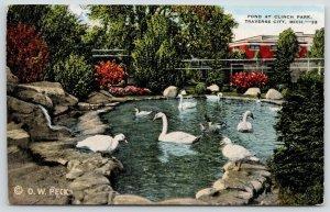 Traverse City Michigan~Clinch Park Pond~Swans & Ducks Closeup~OW Peck~1940 Linen