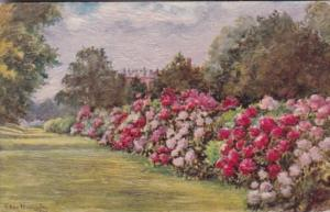 Tucks When The Flowers Are In Bloom By Ellen Warrington 3156