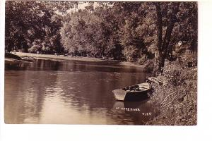 Real Photo, Cows on Shore, Rowboat, Kyte River, Illinois