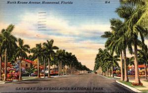 Florida Homestead North Krome Avenue 1951
