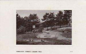 RP: Wimbledon Common , UK , 1900-10s  ; Caesar's Well