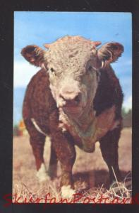 BRISTOW OKLAHOMA ROUTE 66 J&J EAT SHOP RESTAURANT ADVERTISING POSTCARD BULL