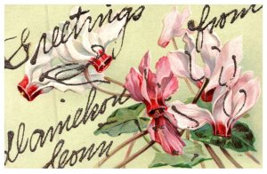 Connecticut  Danielson .Greetings, Flower writing in Glitter