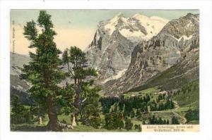 Kleine Scheidegg. Arven und Wetterhorn, Switzerland , 1900-10s