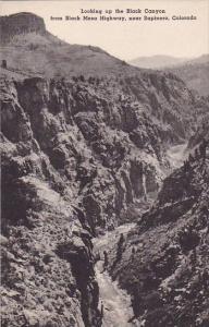 Colorado Sapinero Looking Up The black Canyon From Black Mesa Highway Albertype