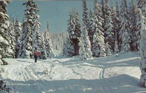 NEW LISKEARD , Ontario, Canada, 1957 ; Skiing