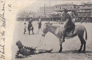 New Jersey Atlantic City Beach Scene Woman Riding Donkey 1905
