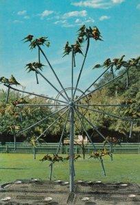GOLD COAST , Queensland , Australia , 1960-80s ; Sanctuary , Currumbin Beach