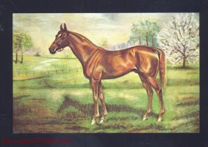 HORSE RACING THOROUGHBRED RACE HORSE MAN O WAR VINTAGE HORSES POSTCARD