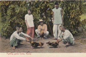 MANILA , Philippines , 00-10s ; Fighting game Cocks