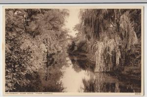 Kent; Canterbury, River Scene, Tower Gardens PPC By Photochrom, Unused, c 1930's