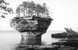 Turnip Rock Pointe Aux Barques MI Unused