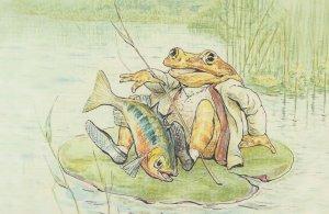 The Tale Of Jeremy Fisher Stickleback Beatrix Potter 1906 Book Postcard