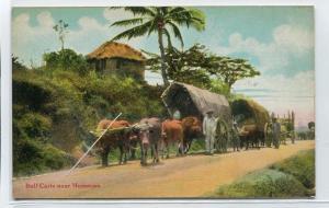 Bullock Carts Humacao Puerto Rico 1910c postcard