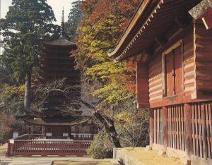 Postal 61554 : Danzan-shrine Nara-Yamato