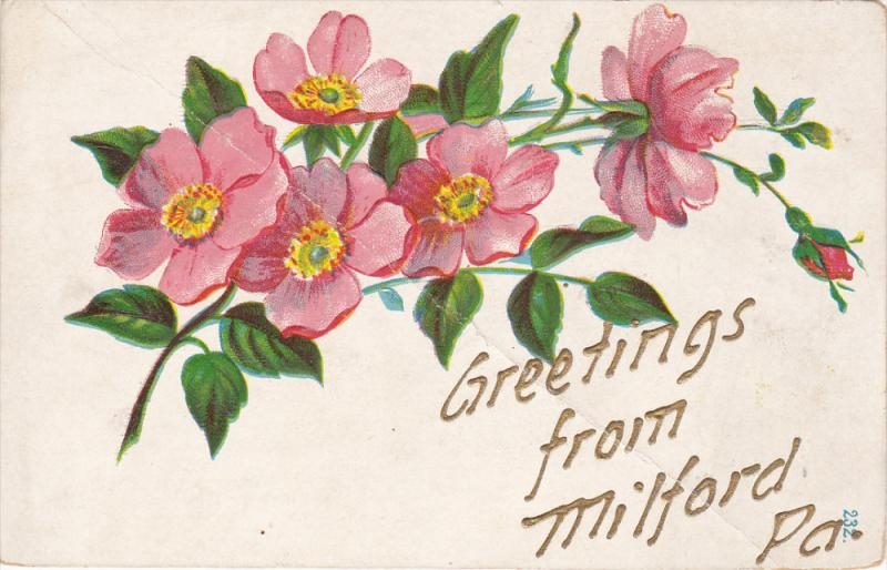 Pink flowers, Greetings from MILFORD, Pennsylvania, 00-10s