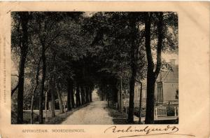 CPA APPINGEDAM Noorder singel NETHERLANDS (706248)
