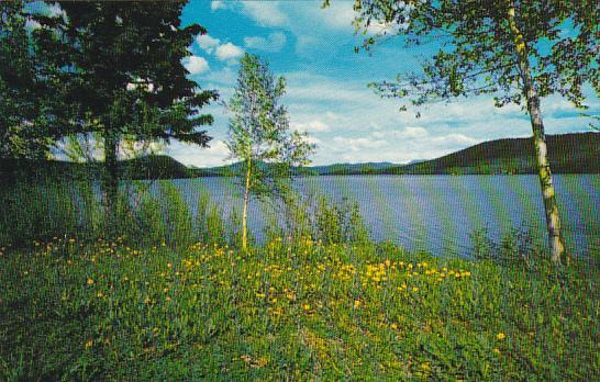 Canada Cariboo Lake Williams Lake British Columbia Alberta