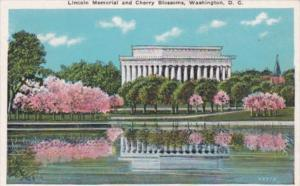 Lincoln Memorial and Cherry Blossoms Washington D C