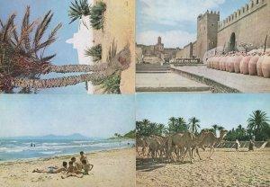 Sousse Djaerba Safsa 4x Tunisia Beach Tunisie Oasis Postcard s