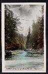 Suspension Brisge Over Capilano Canyon,North Vancouver,British Columbia,Canada