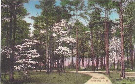 North Carolina Pinehurst Deer Park Albertype