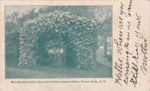New York City Floral Park Moonflower Arbor Grounds Of John Lewis Childs 1907
