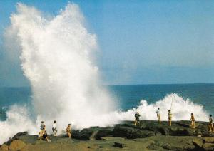 Natal African Rock Fishing South Africa Postcard