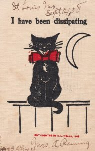 Black cat ; I have been dissipating . 1908