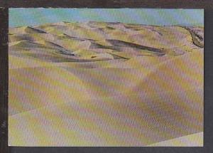Algodones Dunes AZ Postcard BIN