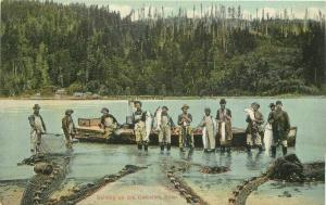 Columbia River Oregon Fishermen Seining C-1910 Postcard 3369