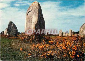Postcard Modern menhirs in the flowery heath Colors of Britain