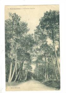 Allee Des Soupirs, Noirmoutier (Vendée), France, 1900-1910s