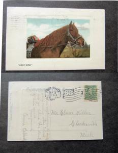 Gipsy King Postcard Chestnut Horse Portrait