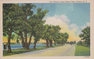 New York Geneva The Willows Along Seneca Lake Curteich
