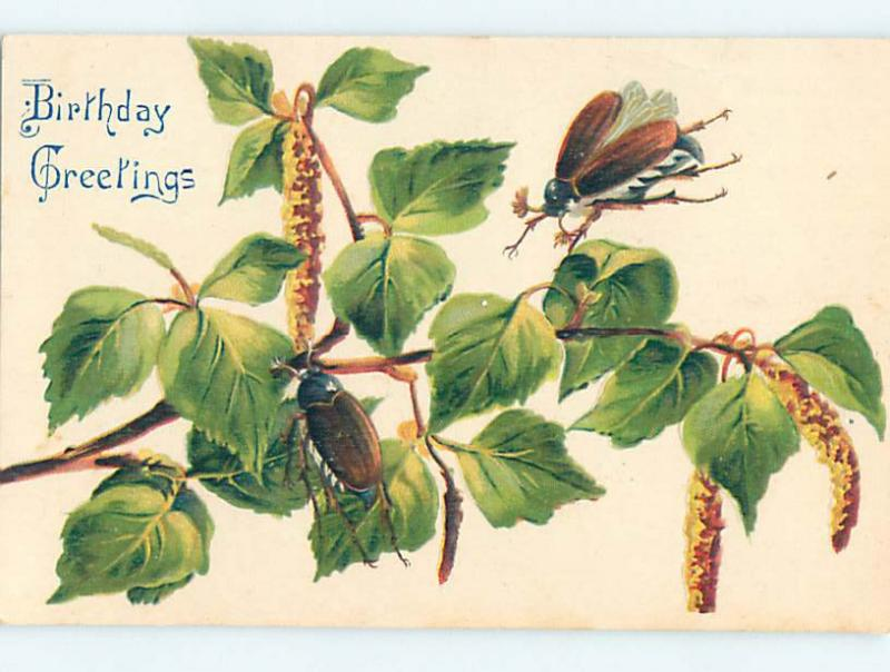 Pre-Linen birthday UGLY LARGE DETAILED BEETLE INSECTS ON PLANT HJ4813