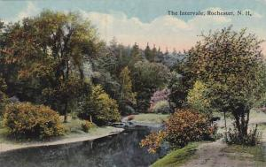 New Hampshire Rochester The Intervale 1916