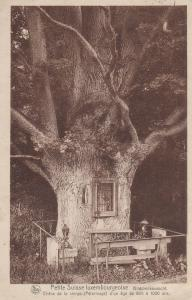 Petite Suisse Luxembourgeoise, Bildcheskouescht, Echternach, Luxembourg, 1900...